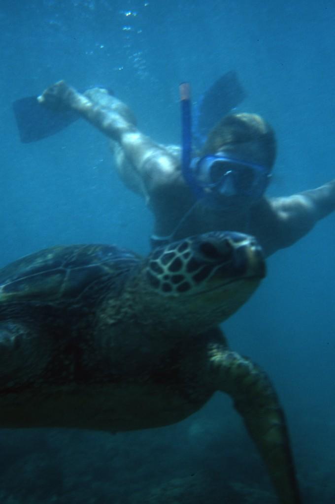 Beth w tortoise